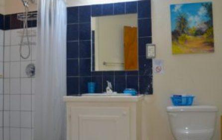 apt4-bathroom-300×269