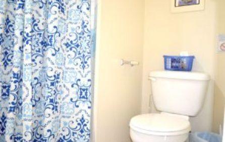 apt7_toilet_bath-300×200