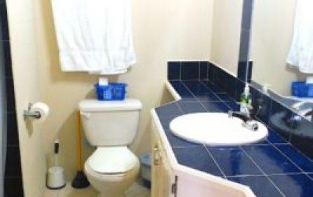 bathroom_2-266×300