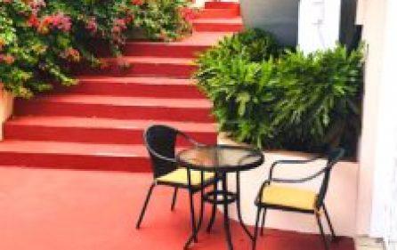 patio_7_bouganvilla-225×300